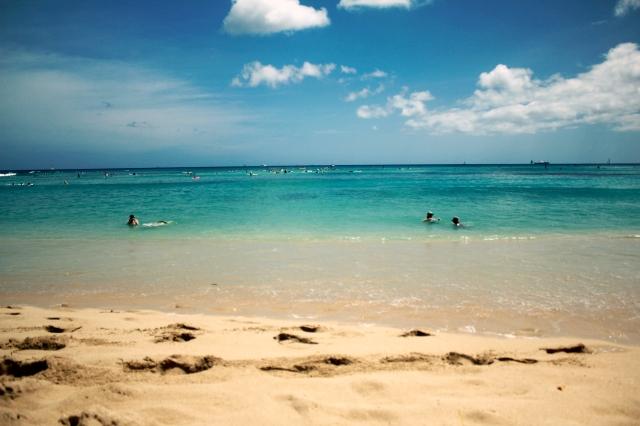 Veggie Angie Waikiki Beach