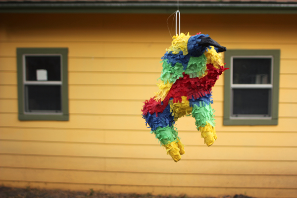 Birthday Piñata? Check!