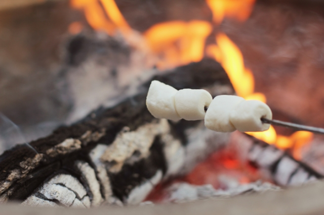 Vegan Marshmallows on the fire - Smore time!